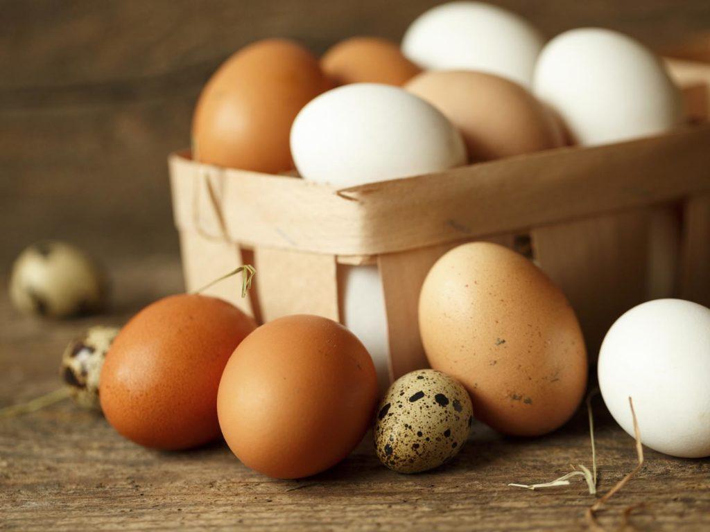 egg yumurta
