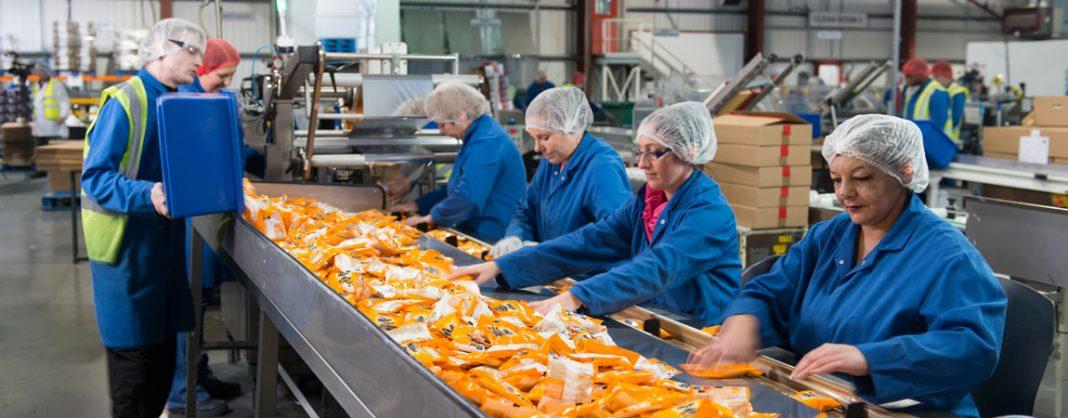 food istehsal qida