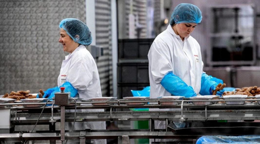 istehsal food production zavod factory