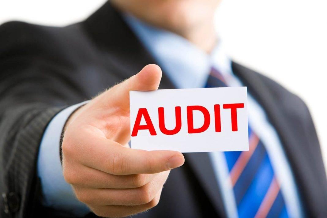 audit sirketleri