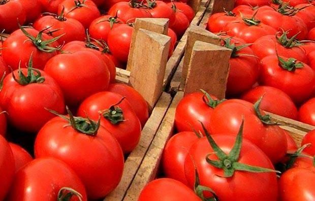 pomidor banker