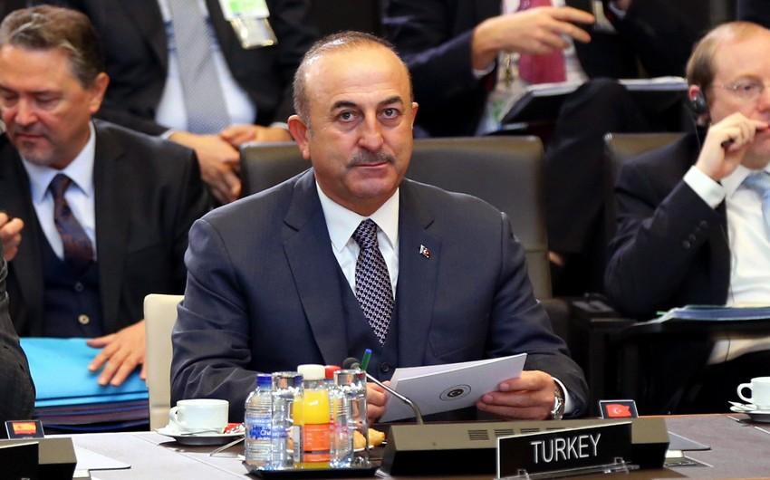 avuşoğlu1