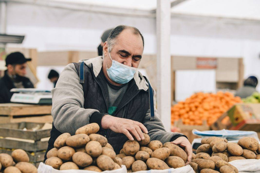 kartof bazar fiziki shexs alici satici potato agro