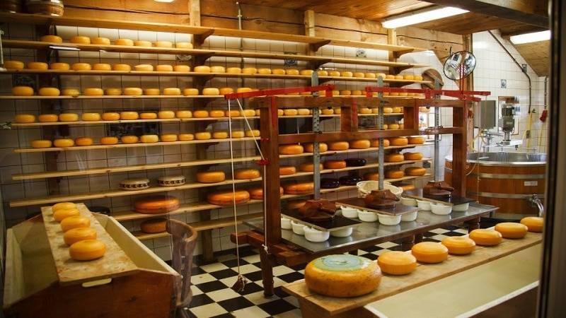 Mini tseh proizvodstva syra kak biznes 2